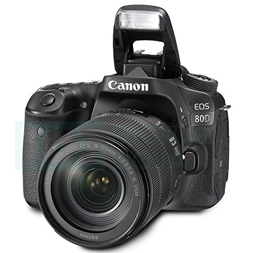 What Is The Best Camera For Amateur Photographers In 2018-2075