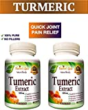 2 BOTTLES 120 Capsules TURMERIC CURCUMIN - Quick Anti-Inflammatory Joint Pain Relief - Antioxidant and Anti-Aging Health Benefits - 100% Pure Organic Supplement