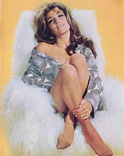Michele Carey 11x14 HD Aluminum Wall Art at Amazon's Entertainment  Collectibles Store