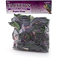 Fluker's Repta Vines-Purple Coleus para Reptiles y Anfibios