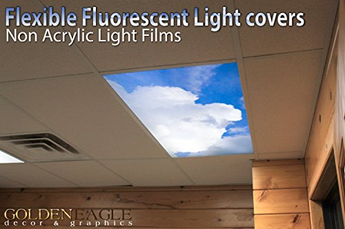 Suspended Ceiling Fluorescent Lights - 8