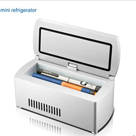 Frigo portatile per insulina Frigorifero portatile Mini Frigo Custodia da viaggi