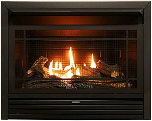 Duluth Forge Vent Free Dual Fuel Ventless Gas Fireplace Insert 26 000 Btu Remote Control Fdf300r Black Home Kitchen