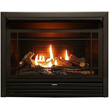 Image of Duluth Forge Vent Free Dual Fuel Ventless Gas Fireplace Insert-26,000 BTU, Remote Control, FDF300R, Black Home and Kitchen
