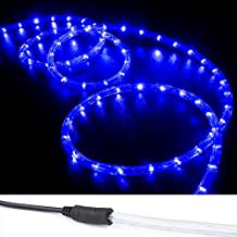 WYZworks 100 ft Blue PRE-ASSEMBLED LED Rope Lights - 2 Wire Christmas Holiday Decoration Indoor / Outdoor Lighting