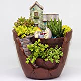 Fairy Garden Pot & Planter For Mini Succulents | Indoor & Outdoor Container Makes The Perfect Gift For Fairy Lovers | Bonus: Comes With Hedge Hog Decor | Plants Not Included