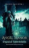 Angel Manor (Lucifer Falls Book 1)