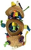 Penn Plax BA1870 Coconut Kabob with Wood & Sisal Pet Collar