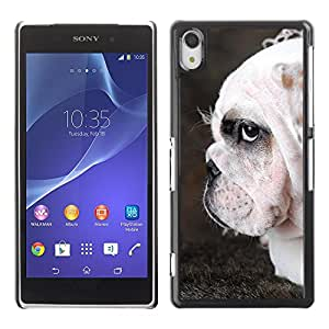 PC/Aluminum Funda Carcasa protectora para Sony Xperia Z2 D6502 D6503 D6543 L50t L50u English Bulldog British Wrinkled Dog / JUSTGO PHONE PROTECTOR