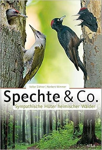 Spechte & Co.: Sympathische Hüter heimischer Wälder