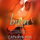 Bargain Audio Book - Burn