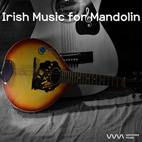Irish Bar Music 3 (Fiddle and Accordian) - Irish Bar Music