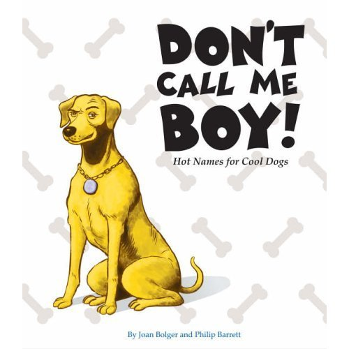 Don't Call Me Boy: Hot Names for Cool Dogs ebook