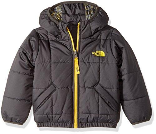 Toddler Reversible Jacket (The North Face Toddler Boy's Reversible Perrito Jacket - Graphite Grey - 2T (Past Season))