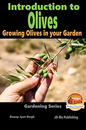 introduction-to-olives-growing-olives-in-your-garden-gardening-series-book-6