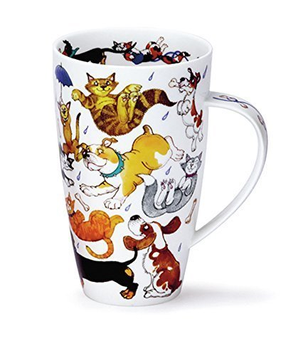 Stunning Raining Cats And Dogs Dunoon Fine Bone China Mug