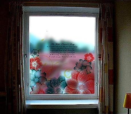 Pegatinas De Pared Ventana Papel Puerta Corredera Baño Con Pegamento Vidrio Esmerilado Película Jardín 60X58 cm: Amazon.es: Bricolaje y herramientas