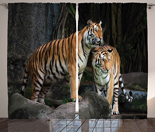 Ambesonne Animal Decor Curtains, Tiger Couple in The Jungle on Big Rocks Image Wild Cats in Nature Print, Living Room Bedroom Window Drapes 2 Panel Set, 108 W X 63 L inches, Grey and Ginger by Ambesonne