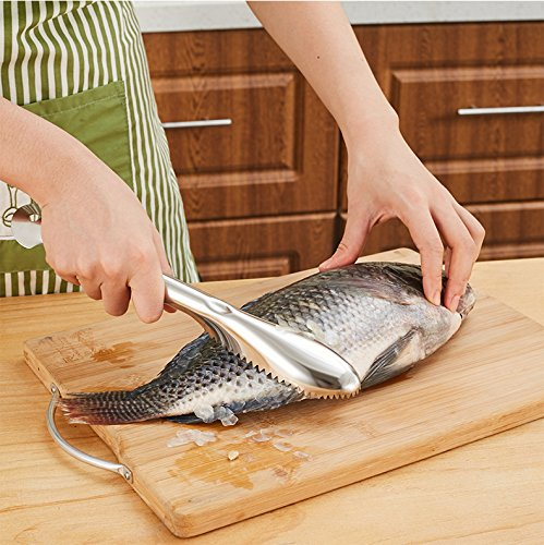 Price comparison product image KC-SP096 Fast Stainless Steel Fish Scale Scrape Remover Killer Kitchen Seafood Tools