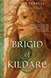 Front cover for the book Brigid of Kildare: A Novel by Heather Terrell