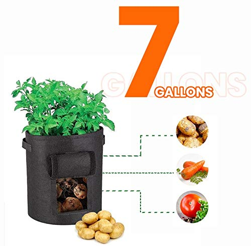 Kiwiaanaa Plant Grow Bags - 7 Gallon - Faster and Healthier Vegetable Growing - Black Fabric Gardening Containers for Sweet Potatoes Carrots Herb - Large Indoor or Outdoor Garden Cloth Planting Pot (Best Vegetable Plants For Container Gardening)