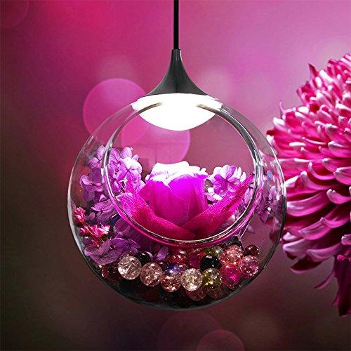 ... De Luz Eterna Luz Eterna Flower Shop Decorativos De Cristal De Murano Romántica Melodía Ronda Colgantes El Azul El Violeta: Amazon.es: Iluminación