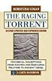 The Raging Torrent: Historical Inscriptions from Assyria and Babylonia Relating to Ancient Israel
