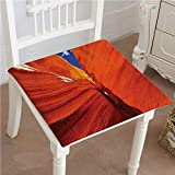 Mikihome Premium Chair Cushion s Grand Canyon in of America Comfort Memory PadCushions - Assorted Colors 14''x14''x2pcs