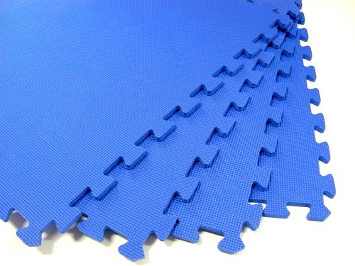 120 Square Feet ( 30 tiles + borders) 'We Sell Mats' Blue 2' x 2' x 3/8'' Anti-Fatigue Interlocking EVA Foam Exercise Gym Flooring by We Sell Mats