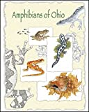 img - for Amphibians of Ohio Volume 17 Number 1 book / textbook / text book