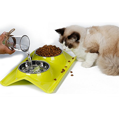 double food dish - 9