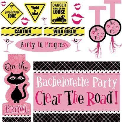 Bachelorette Car Decorations (Bachelorette Party Car Decorating Kit)