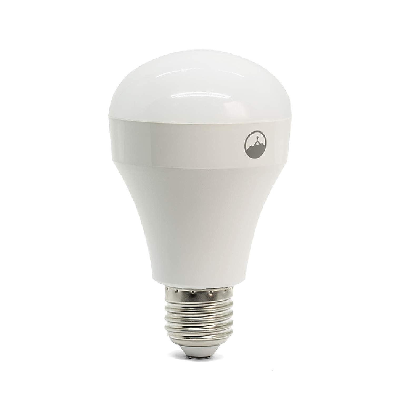 Fox & Summit FS-LB100 Wi-Fi LED電球 ハブ不要 マルチカラー 調光可能 アプリコントロール Alexa Google アシスタント対応 B07H3CY177