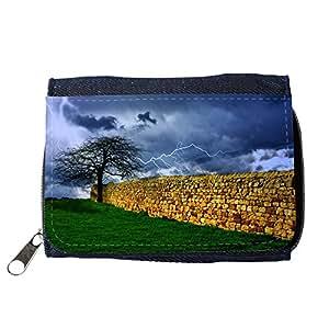 le portefeuille de grands luxe femmes avec beaucoup de compartiments // M00153671 Rain Tree Tormenta del relámpago del // Purse Wallet