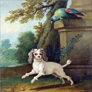 Posterlounge Stampa su Legno 30 x 30 cm: Zaza, The Dog di Jean-Baptiste Oudry/Bridgeman Images
