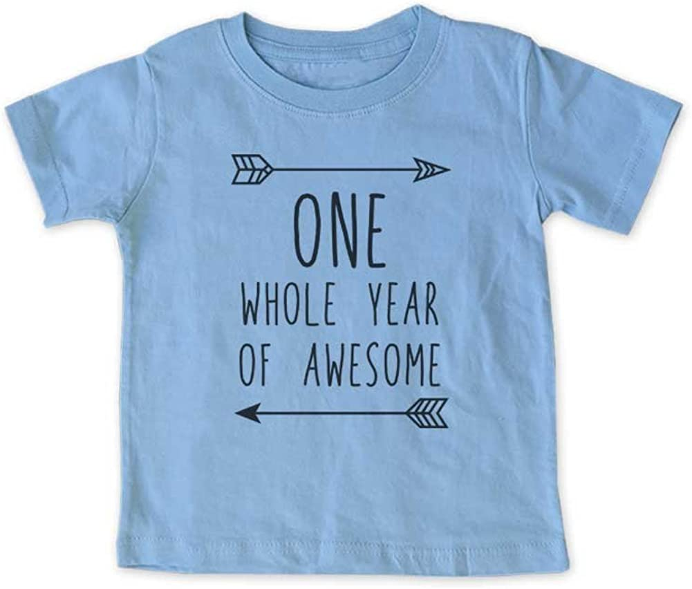 ONE Whole Year of Awesome Boho First 1st Birthday Shirt Age 1 One Year Old Infant Shirt