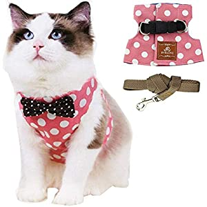 ANIAC Pet Escape Proof Harness and Leash Set with Bow Knot Padded Cat Vest Adjustable Walking Jackets Costume Accessories for Kitten Puppy and Small Dogs