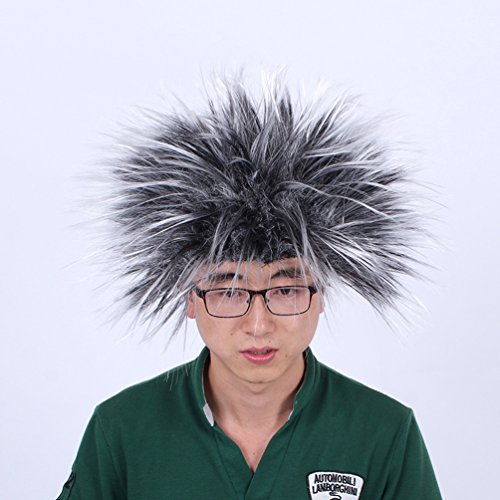 [Halloween Costume Party Wigs Exaggerated Clown Wig Hedgehog Head (black)] (Hedgehog Costumes For Kids)