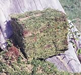25 LB BALE OF OREGON MOSS
