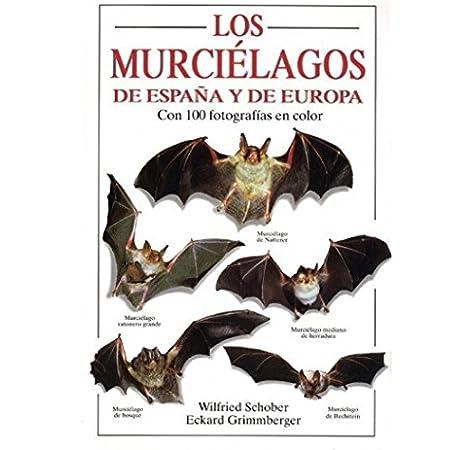 LOS MURCIELAGOS DE ESPAÑA Y DE EUROPA GUIAS DEL NATURALISTA-MAMIFEROS: Amazon.es: SCHOBER, W. Y GRIMMBERGER, E.: Libros