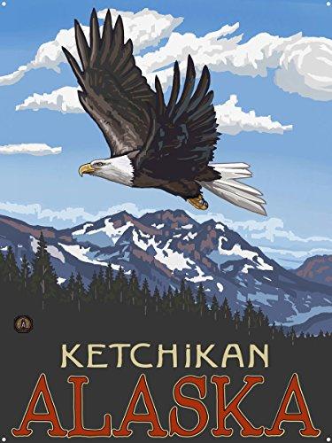 (Ketchikan Alaska Bald Eagle Metal Art Print by Paul A. Lanquist (18