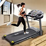 EVERLAST EV651 Folding Treadmill Machine | 2.5 CHP Motor, Power Incline, 20 x