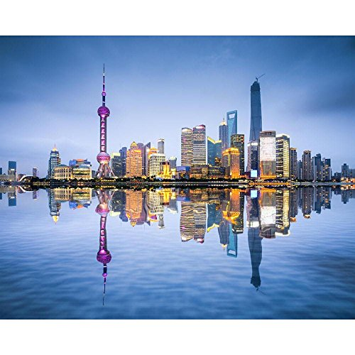 (Pitaara Box Shanghai City Skyline of Pudong District, China D2 Peel & Stick Vinyl Wall Sticker 30 X 24Inch)