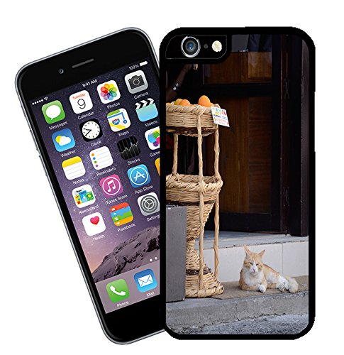 Cyprus Cat - This cover will fit Apple model iPhone 7 (not 7 plus) - By Eclipse Gift Ideas