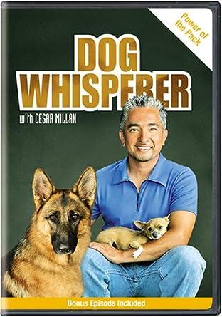 How tall is cesar millan dog whisperer