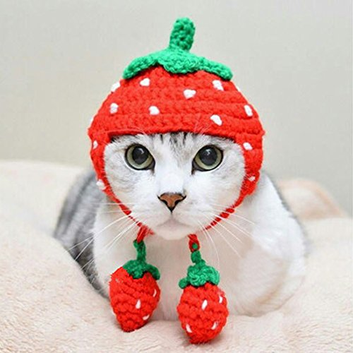 Pet Hat - Cat Yarn Hat Handmade Strawberry Autumn Winter Warm Cute Cap Apparel Christmas Gift for (Cat And Ball Of Yarn Costume)