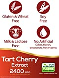 Tart Cherry Extract Capsules | 200 Count | 2400