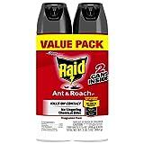 Best Johnson Roach Killer Sprays - DIVERSEY Raid Fragrance Free Ant And Roach Killer Review