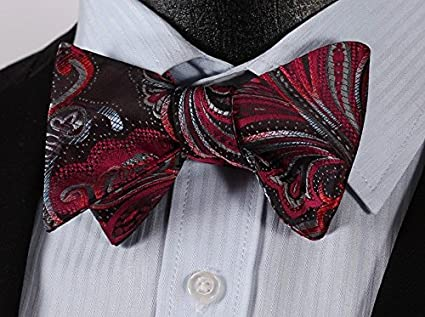 HISDERN Men's Paisley Floral Jacquard Wedding Party Self Bow Tie & Pocket Square Set BF431PS