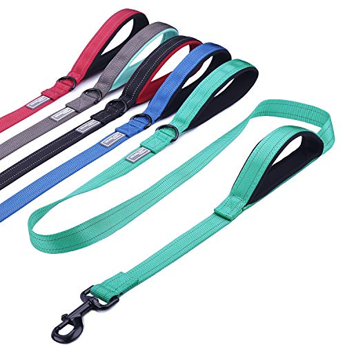 Double Handle Control (Vivaglory Reflective Dog Leash with Padded Handle, Heavy Duty 5ft Long Safety Training Double Handle Leash Walking Lead for Medium to Large Dogs, Green)